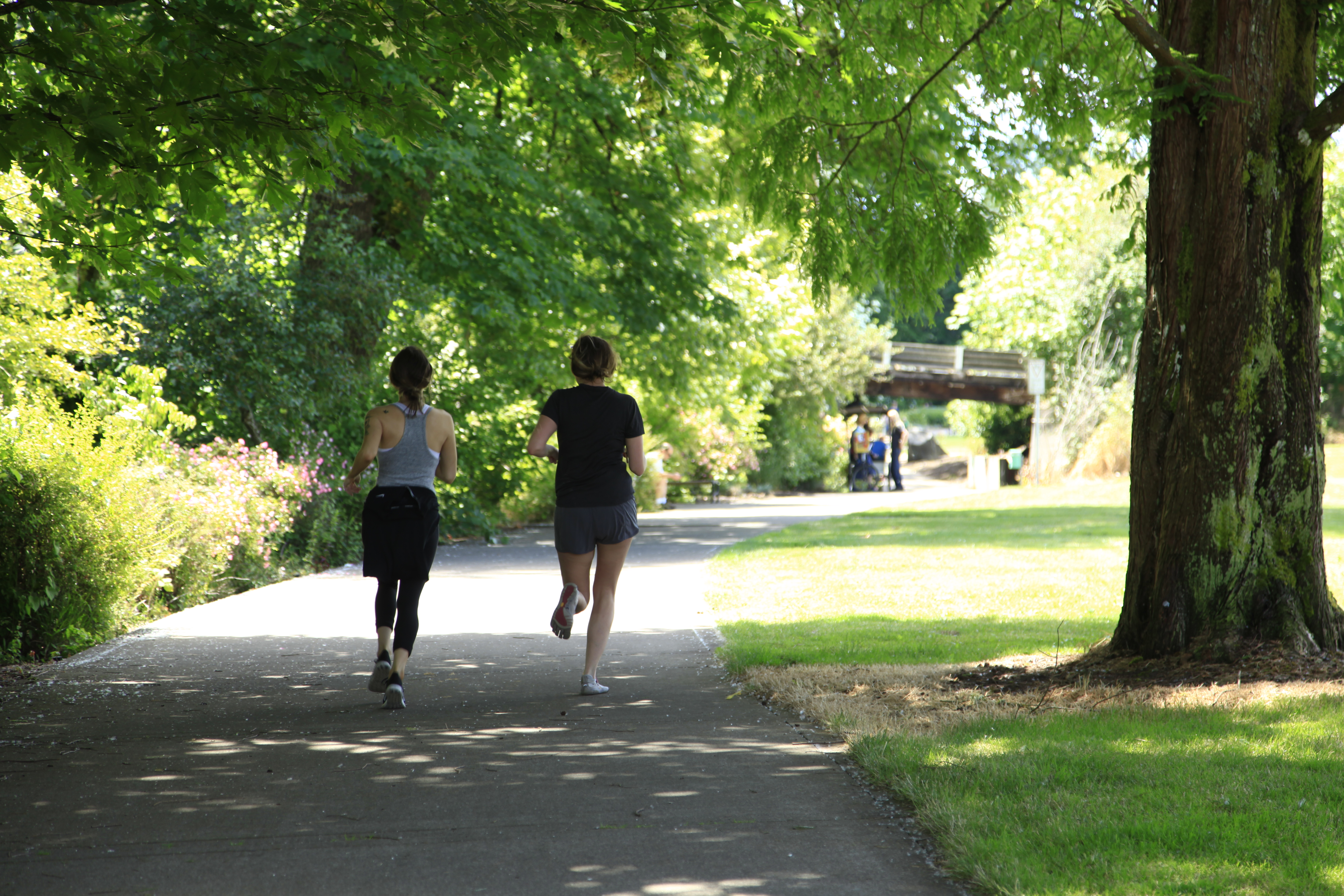 Students run along the riverfront in downtown Corvallis.