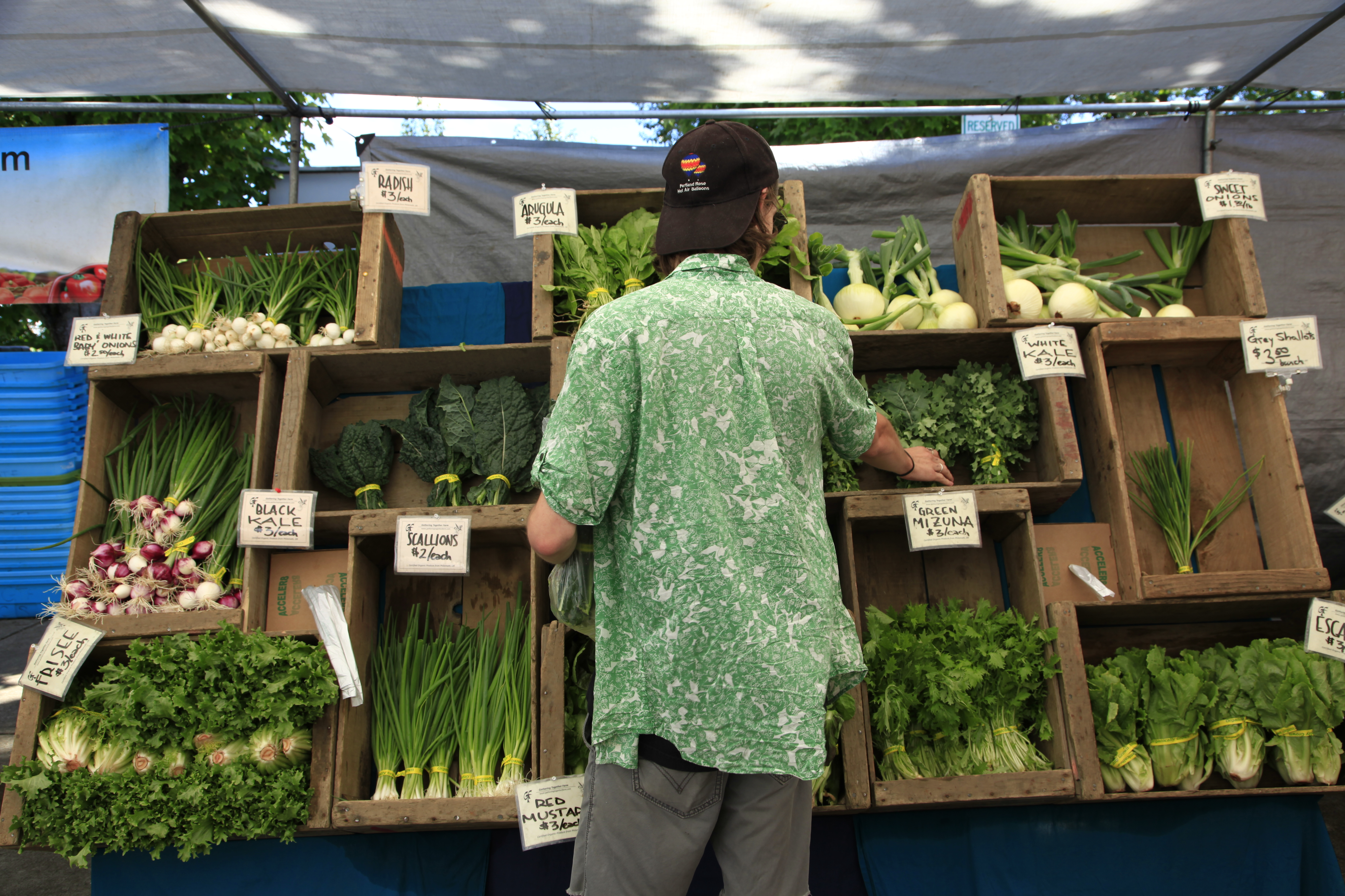 A student shops at the downtown Corvallis farmers market.
