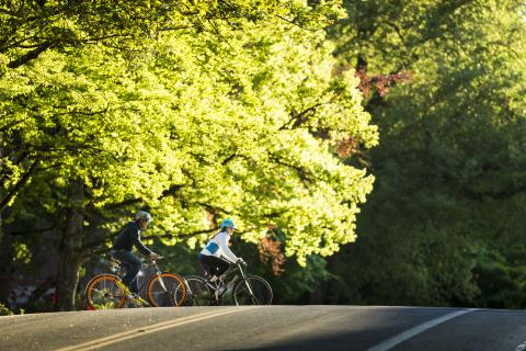Students ride their bikes along the beautiful OSU campus.