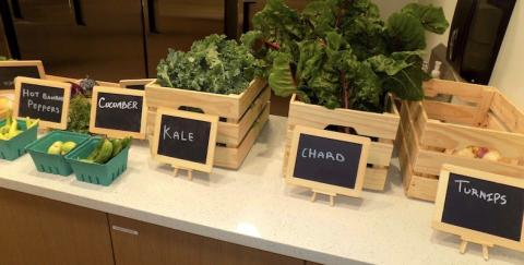 Kale and Turnips in wooden crates